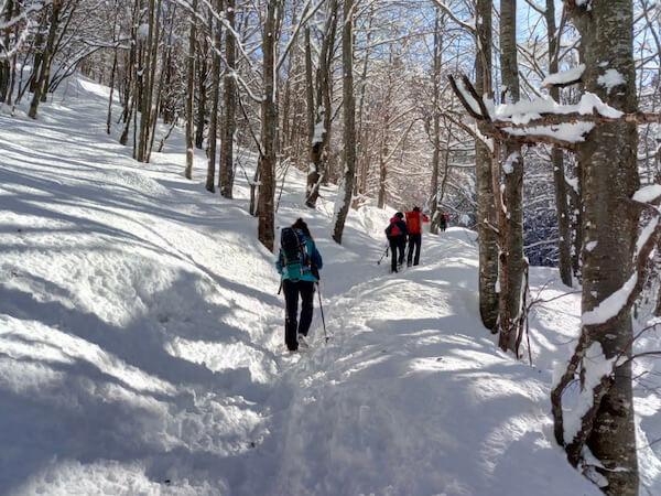 Attività di team building sulla neve a Bellagio